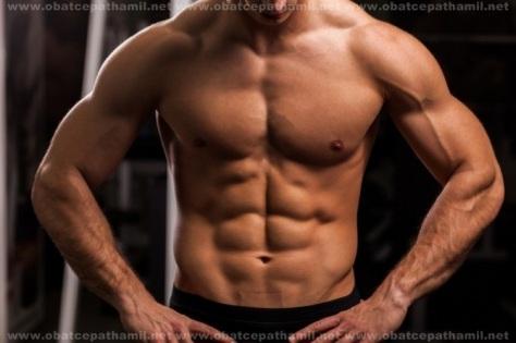 Suplemen-Fitnes-Untuk-Meningkatkan-Massa-Otot